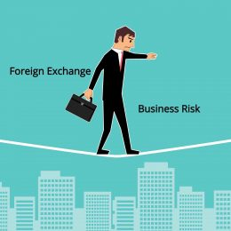 Foreign Exchange Business Risks